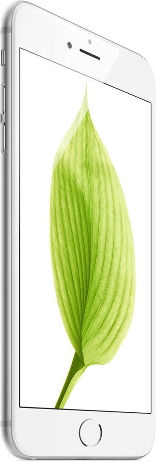 iPhone6 plus display